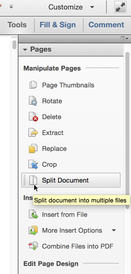 Select 'Split Document'