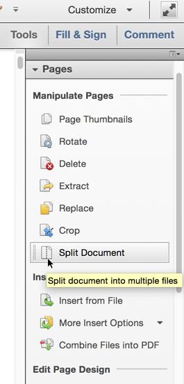 Select 'Split Document'