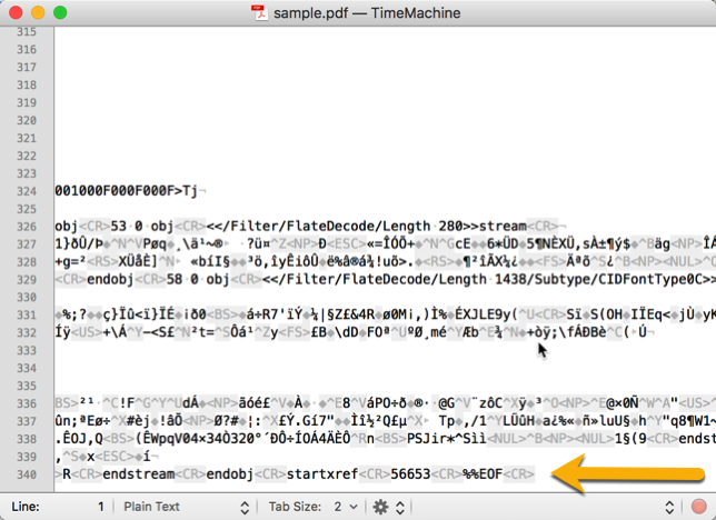 Screenshot of the end of a PDF file loaded in a text editor